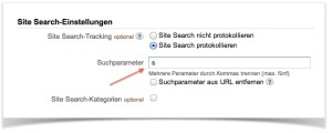 Google Analytics-Einstellungen, 1