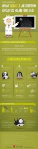Info-Grafik: Google-Algorithmen und ihre wichtigsten Eigenschaften