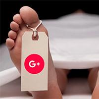 Google+-Abschaltung: Platzieren Sie Ihre Daten am richtigen Ort